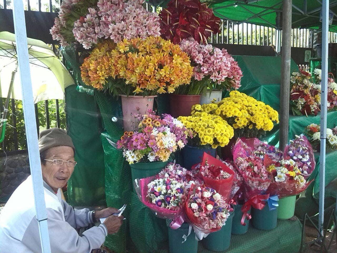 Flores .