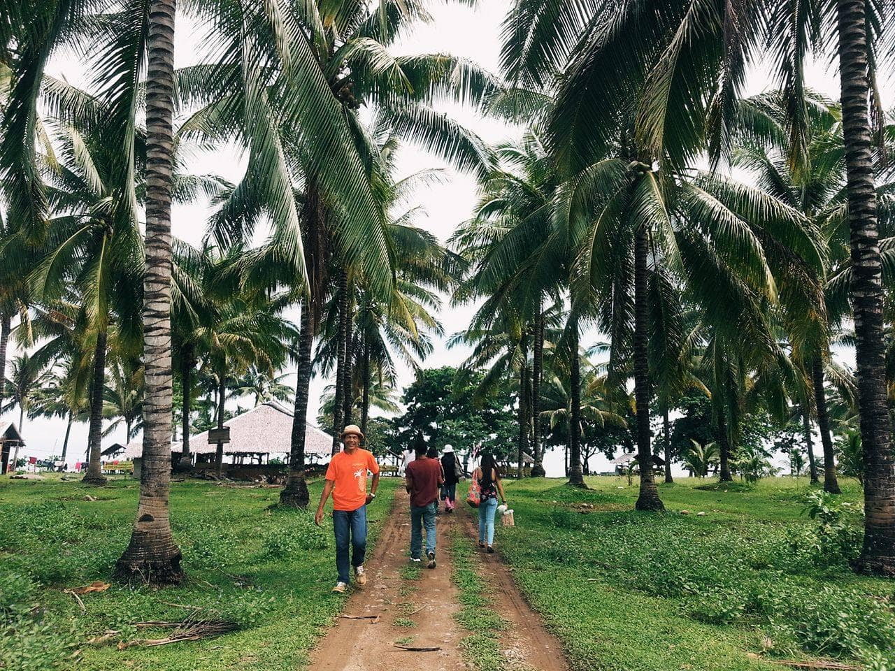 Filipinos walking, surrounded by nature and coconut trees.
