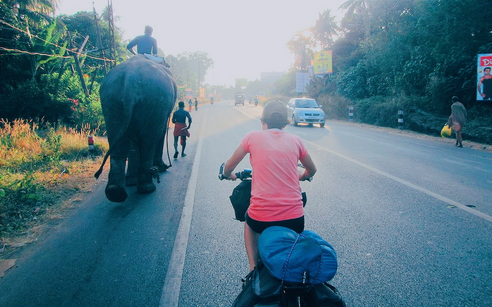 Una Cycling in India next to an elephant.