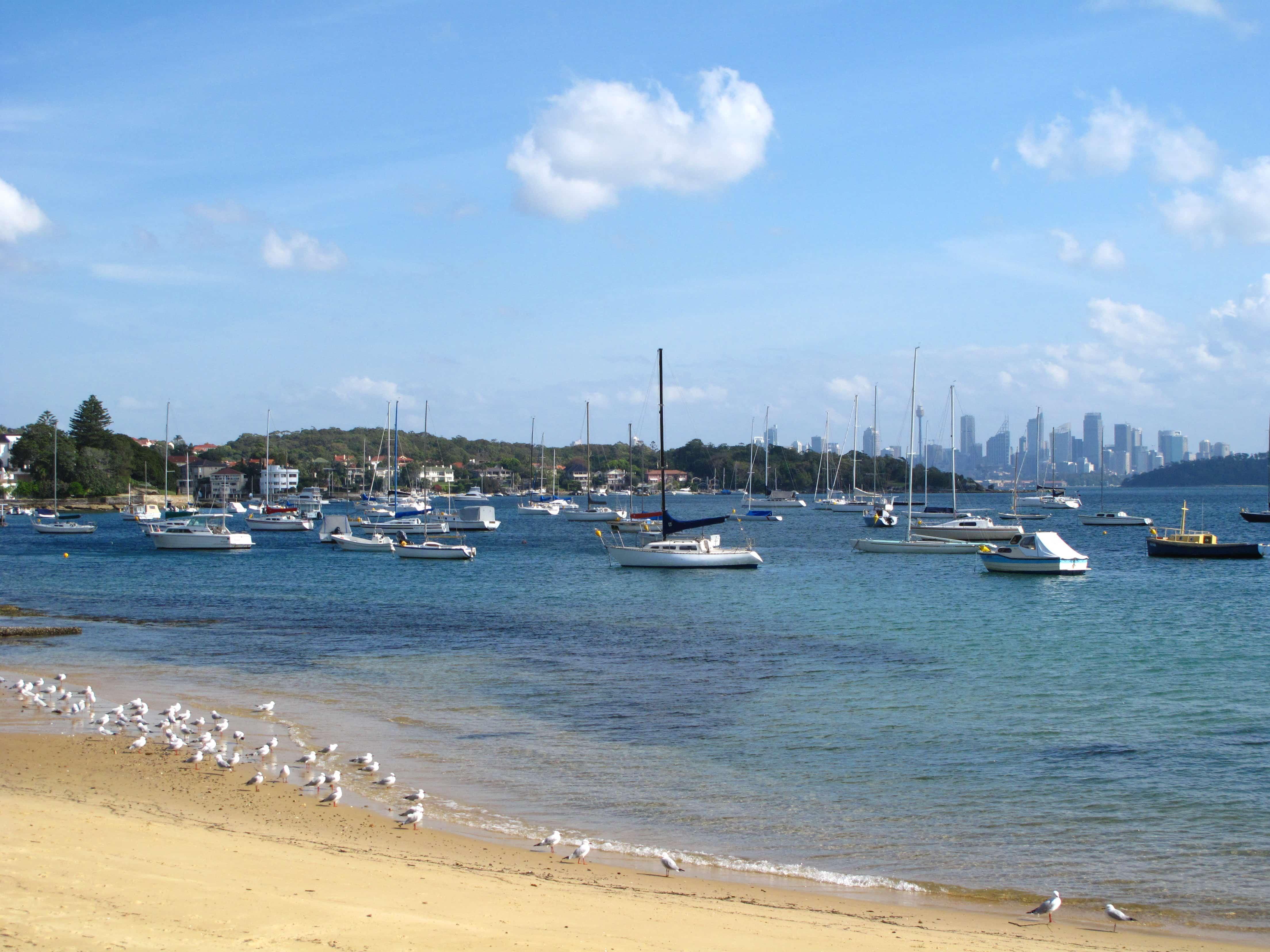 breakfast by the water in Sydney